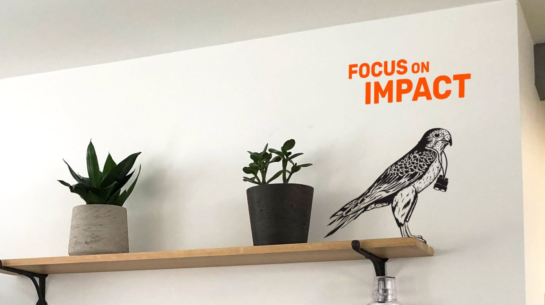 Impact - Crowdcube company values